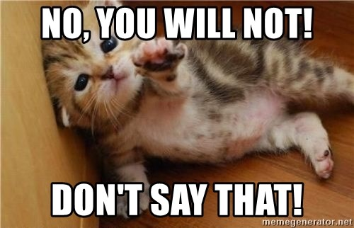 fallen kitten - no, you will not! don't say that!