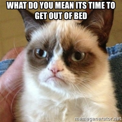 Grumpy Cat  - what do you mean its time to get out of bed