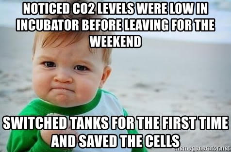 fist pump baby - Noticed CO2 levels were low in incubator before leaving for the weekend Switched tanks for the first time and saved the cells