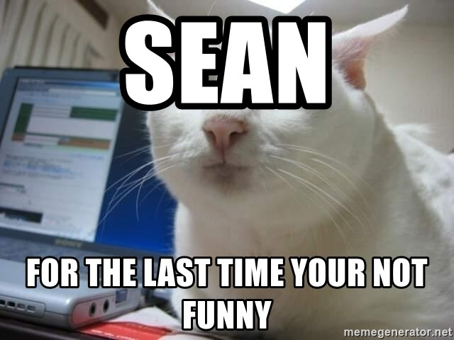 Serious Cat - SEAN FOR THE LAST TIME YOUR NOT FUNNY