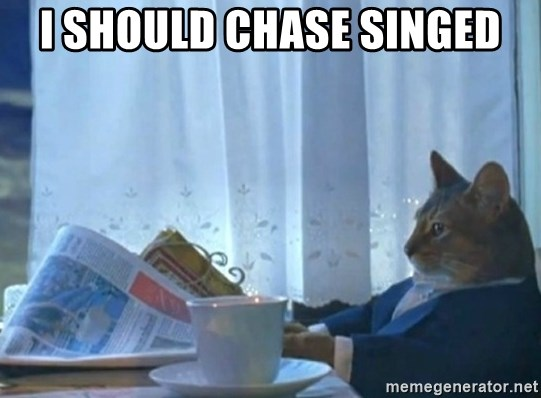 newspaper cat realization - I should chase singed
