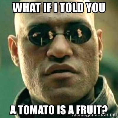 what if i told you matri - WHAT IF I TOLD YOU A TOMATO IS A FRUIT?