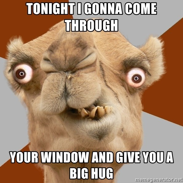 Crazy Camel lol - TONIGHT I GONNA COME THROUGH YOUR WINDOW AND GIVE YOU A BIG HUG
