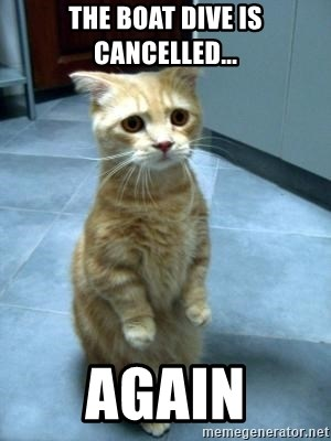 Sadcat - The Boat dive is cancelled... again