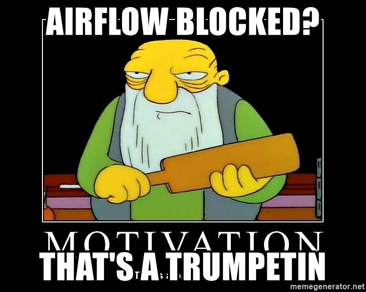 Thats a paddlin - Airflow blocked? that's a trumpetin