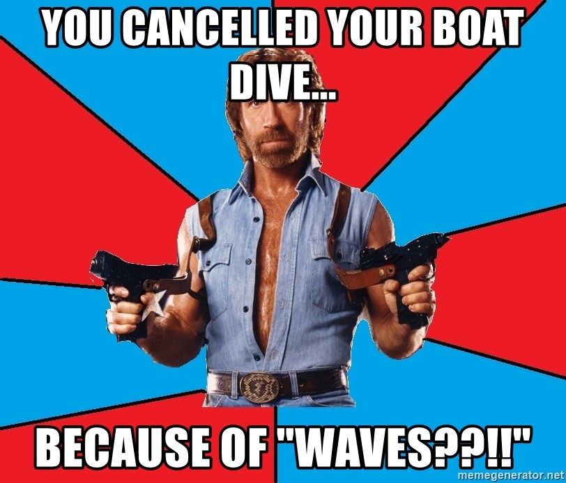 """Chuck Norris  - you cancelled your boat dive... because of """"waves??!!"""""""