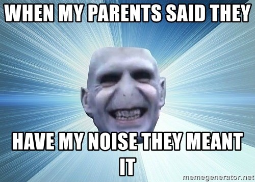vold - WHEN MY PARENTS SAID THEY  HAVE MY NOISE THEY MEANT IT