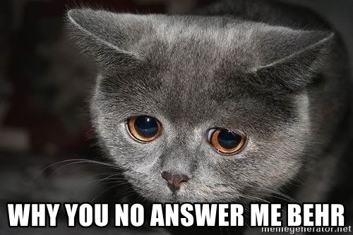 sad cat -  why you no answer me behr