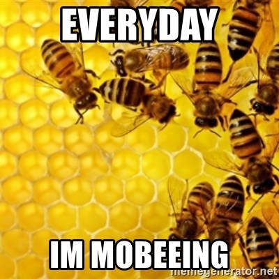 Honeybees - everyday im mobeeing