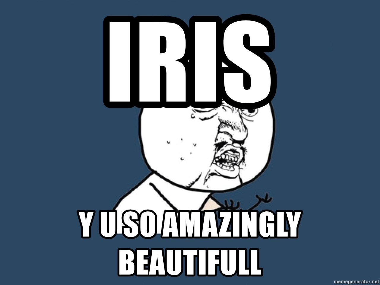 Y U No - IRIS Y U SO AMAZINGLY BEAUTIFULL