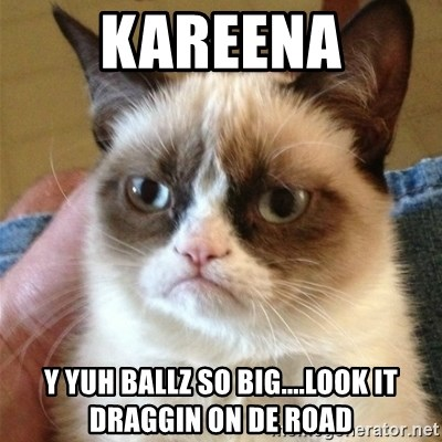 Grumpy Cat  - kareena y yuh ballz so big....look it draggin on de road