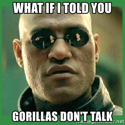 Matrix Morpheus - WHAT IF I TOLD YOU GORILLAS DON'T TALK