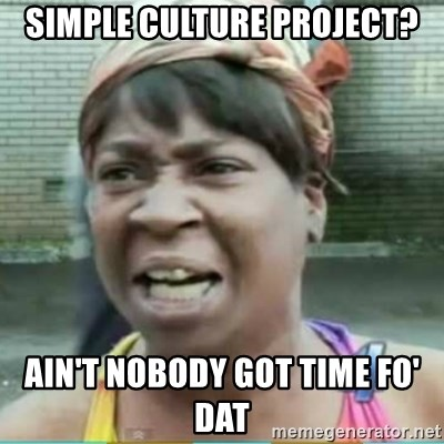 Sweet Brown Meme - Simple Culture project? ain't nobody got time fo' dat