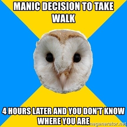 Bipolar Owl - Manic DECISION to take walk 4 hours later and You don't know where you are