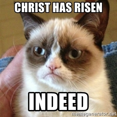 Grumpy Cat  - christ has risen indeed