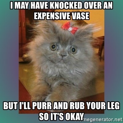 cute cat - I MAY HAVE KNOCKED OVER AN EXPENSIVE VASE BUT I'LL PURR AND RUB YOUR LEG SO IT'S OKAY