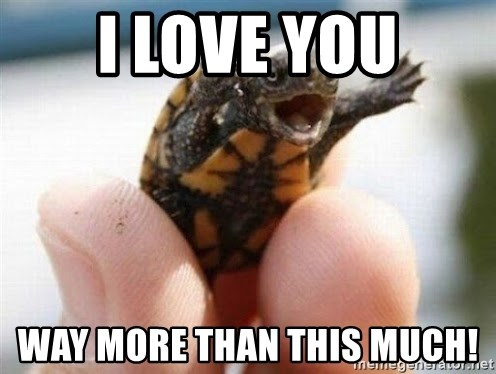 angry turtle - I love you Way more than this much!