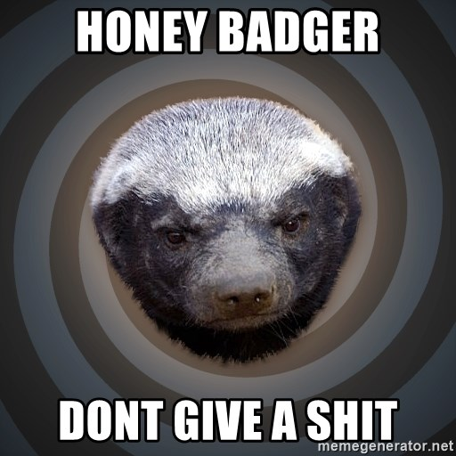 Fearless Honeybadger - HONEY BADGER DONT GIVE A SHIT