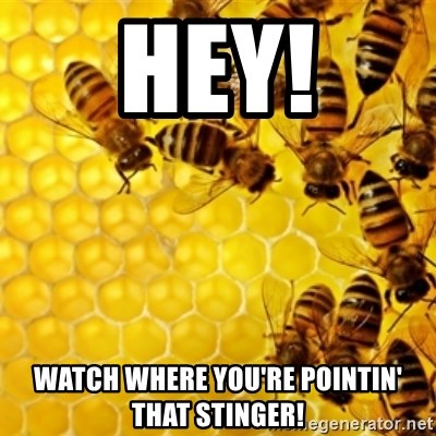 Honeybees - hey! watch where you're pointin' that stinger!