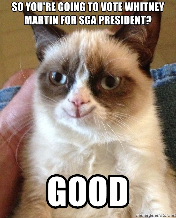 Happy Grumpy Cat 2 - so You're going to vote whitney martin for sga president? good