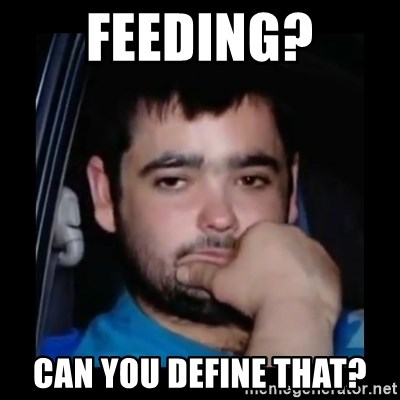 just waiting for a mate - Feeding? Can you define that?