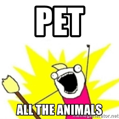x all the y - Pet all the animals