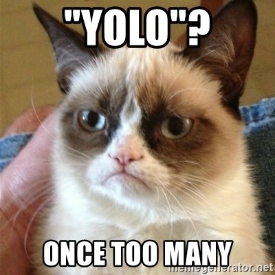 "Grumpy Cat  - ""Yolo""? once too many"