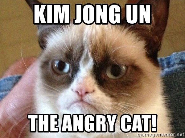 Angry Cat Meme - KIM JONG UN THE ANGRY CAT!