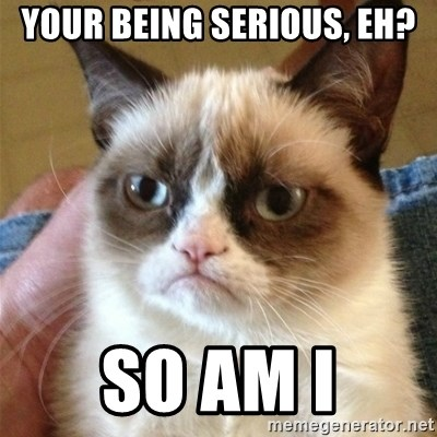 Grumpy Cat  - your being serious, EH? SO AM I