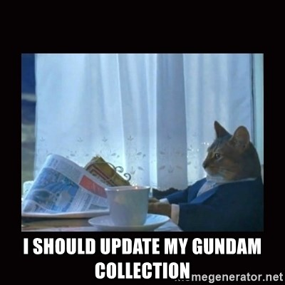 i should buy a boat cat -  I should update my gundam collection