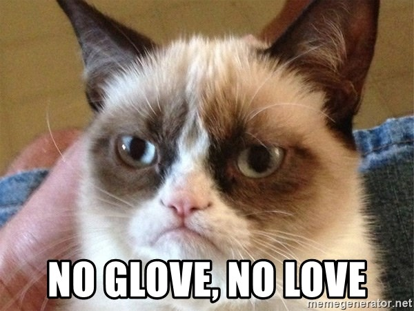 Angry Cat Meme -  NO GLOVE, NO LOVE