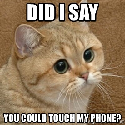 motherfucking game cat - Did i say you could touch my phone?