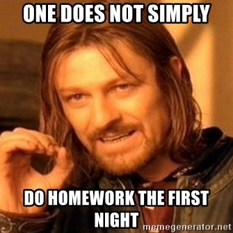 One Does Not Simply - One does not simply do homework the first night