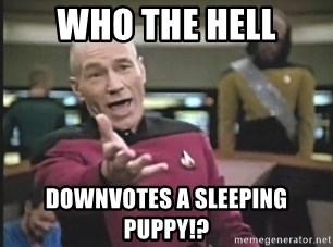 Captain Picard - Who the hell downvotes a sleeping puppy!?