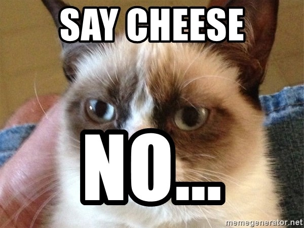 Angry Cat Meme - say cheese no...