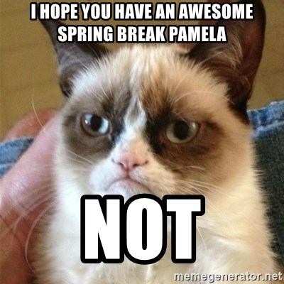 Grumpy Cat  - I hope you have an awesome spring break pamela not