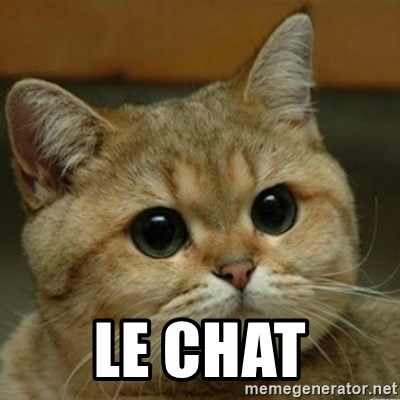 Do you think this is a motherfucking game? -    LE CHAT