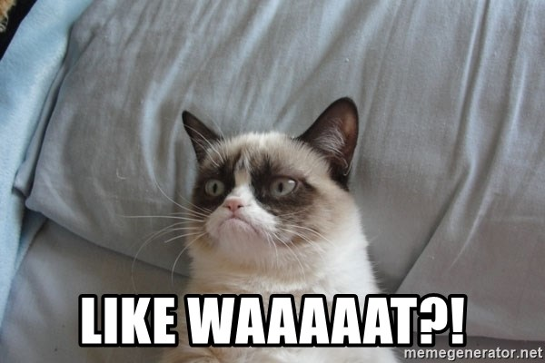Grumpy cat good -  like waaaaat?!