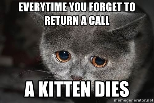 sad cat - Everytime you forget to return a call a kitten dies