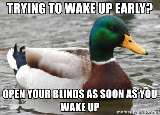 Actual Advice Mallard 1 - trying to wake up early? Open your blinds as soon as you wake up