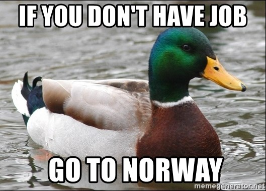 Actual Advice Mallard 1 - if you don't have job  go to norway