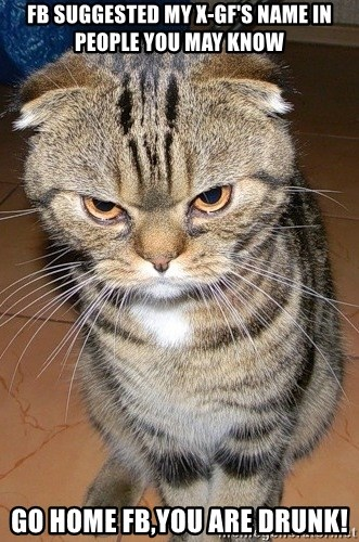 angry cat 2 - fb suggested my x-gf's name in people you may know go home fb,you are drunk!