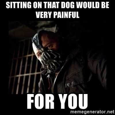 Bane Meme - SItting on that dog Would be very painful For you