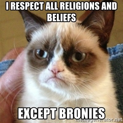 Grumpy Cat  - I respect all religions and beliefs except bronies