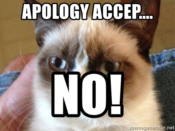 Angry Cat Meme - Apology accep.... No!
