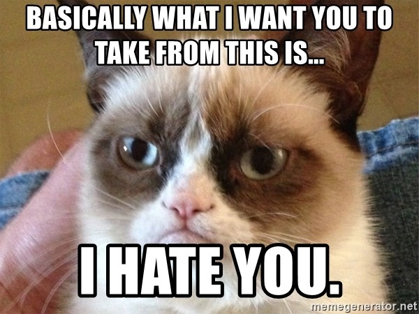 Angry Cat Meme - Basically what I want you to take from this is... I HATE YOU.