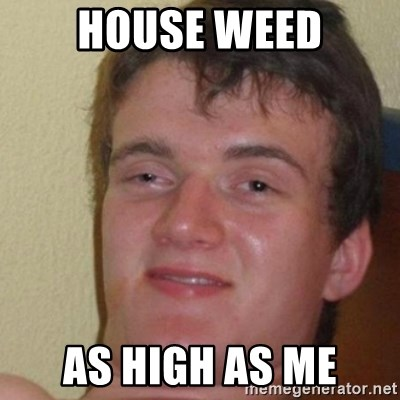 really high guy - House weed as high as me