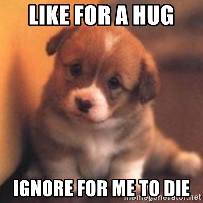 cute puppy - like for a hug  IGNORE for me to die