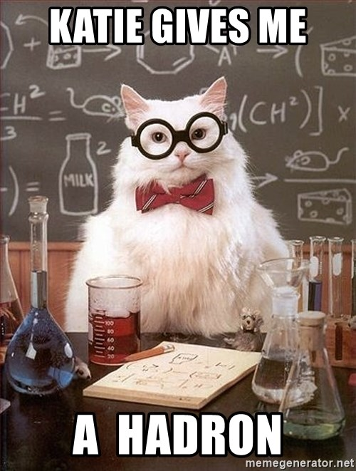 Science Cat - Katie gives me  A  hadron
