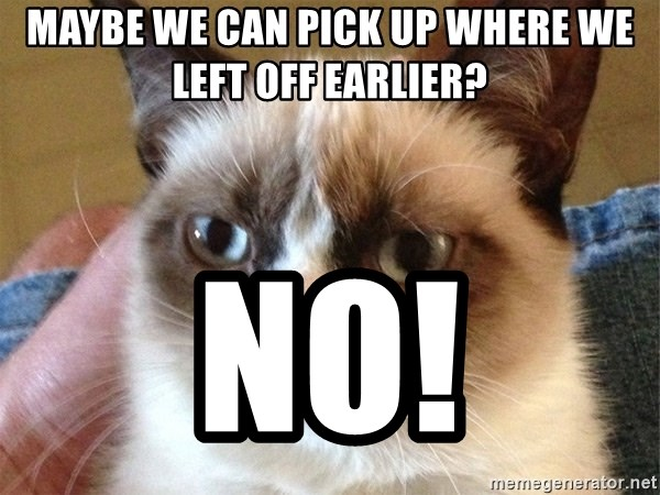 Angry Cat Meme - Maybe we can pick up where we left off earlier? NO!